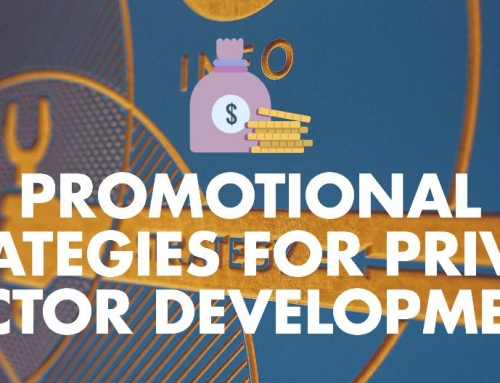 Promotional Strategies For Private Sector Development